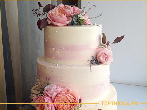 Розовый 3 ярусный бисквитный торт на свадьбу